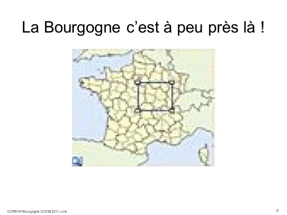 9 COREVIH Bourgogne, ICONE 2011, Lille La Bourgogne cest à peu près là !