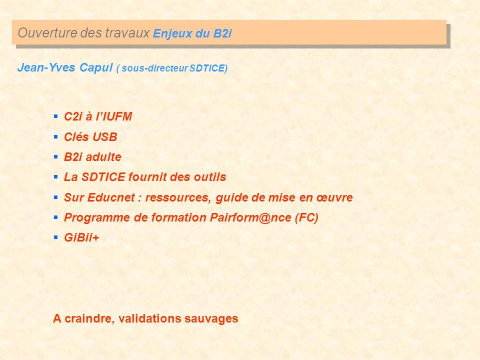 Ouverture des travaux Enjeux du B2i Jean-Yves Capul ( sous-directeur SDTICE) C2i à lIUFM Clés USB B2i adulte La SDTICE fournit des outils Sur Educnet
