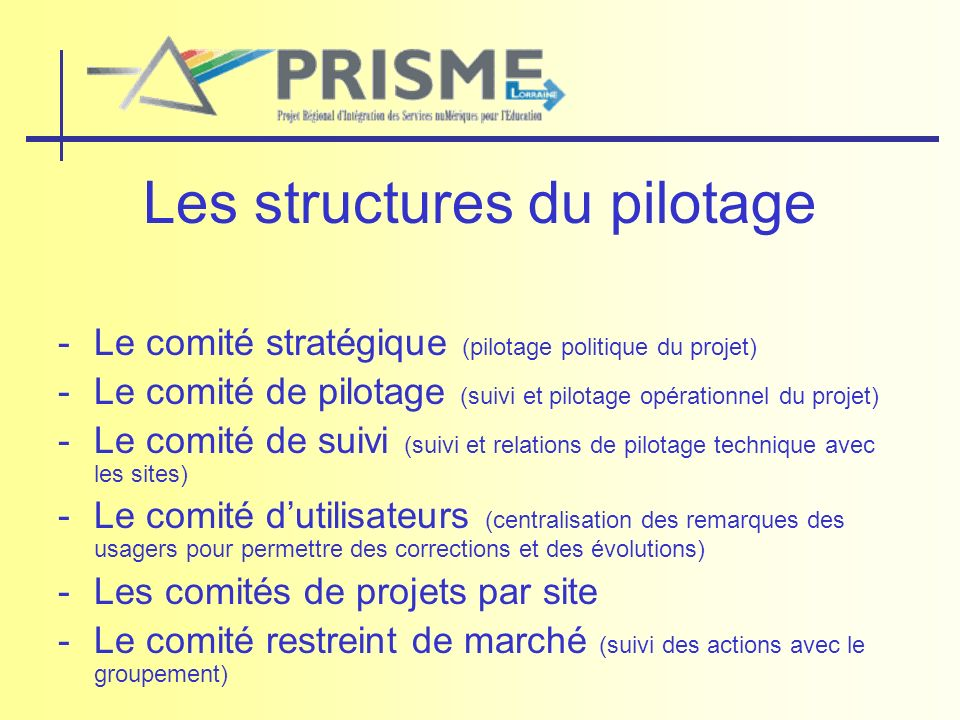 Les structures du pilotage -Le comité stratégique (pilotage politique du projet) -Le comité de pilotage (suivi et pilotage opérationnel du projet) -Le