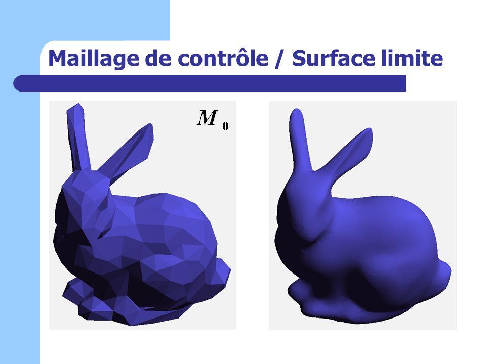 Maillage de contrôle / Surface limite