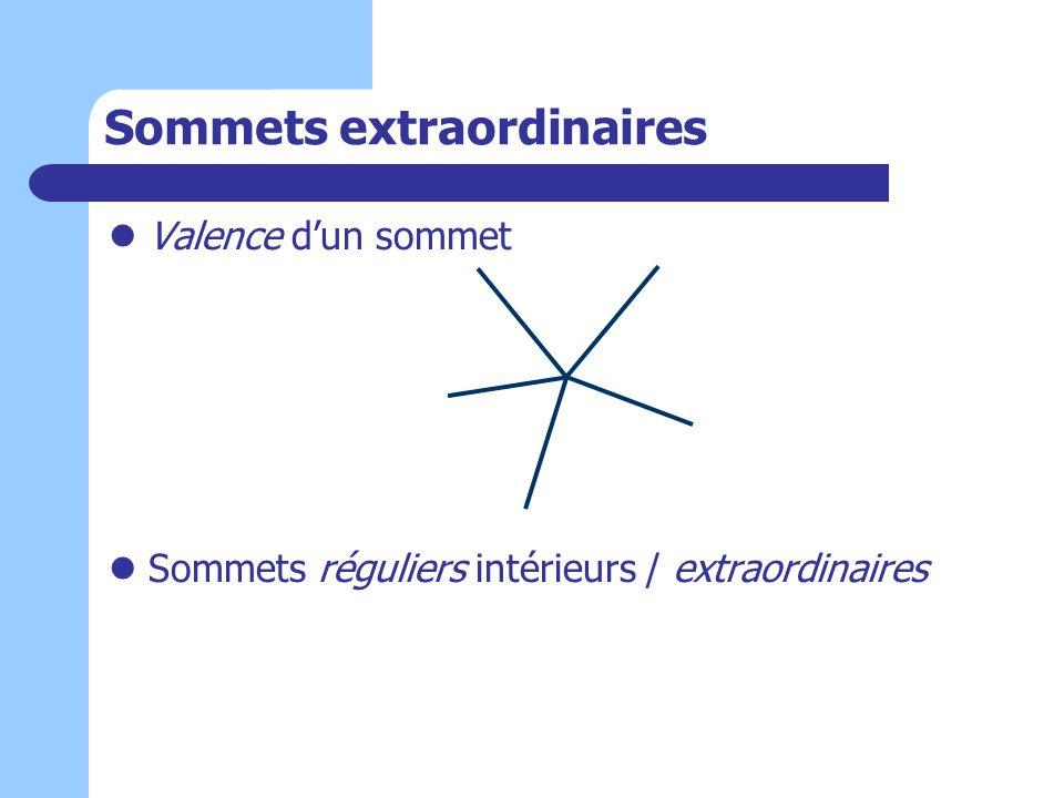 Sommets extraordinaires Valence dun sommet Sommets réguliers intérieurs / extraordinaires