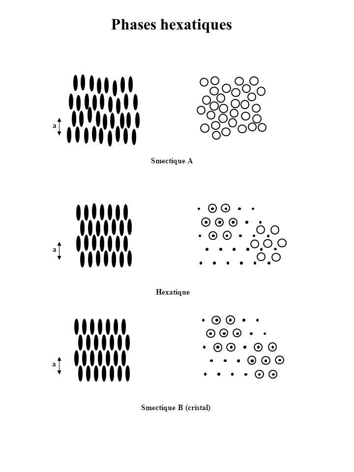 Phases hexatiques Smectique A a Smectique B (cristal) a a Hexatique