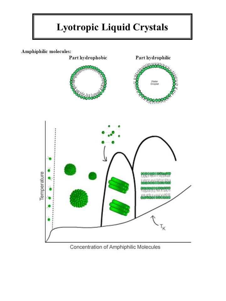 Lyotropic Liquid Crystals Amphiphilic molecules: Part hydrophobic Part hydrophilic