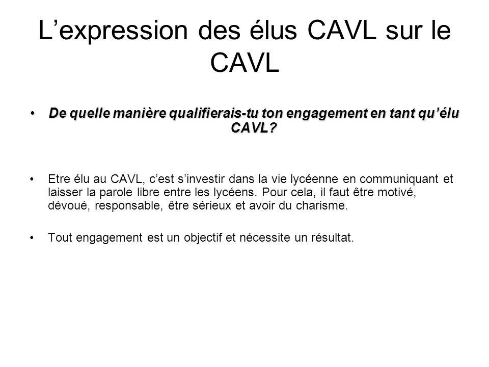 Lexpression des élus CAVL sur le CAVL (suite) Selon toi quels mots qualifient le mieux le rôle délu au CAVL.