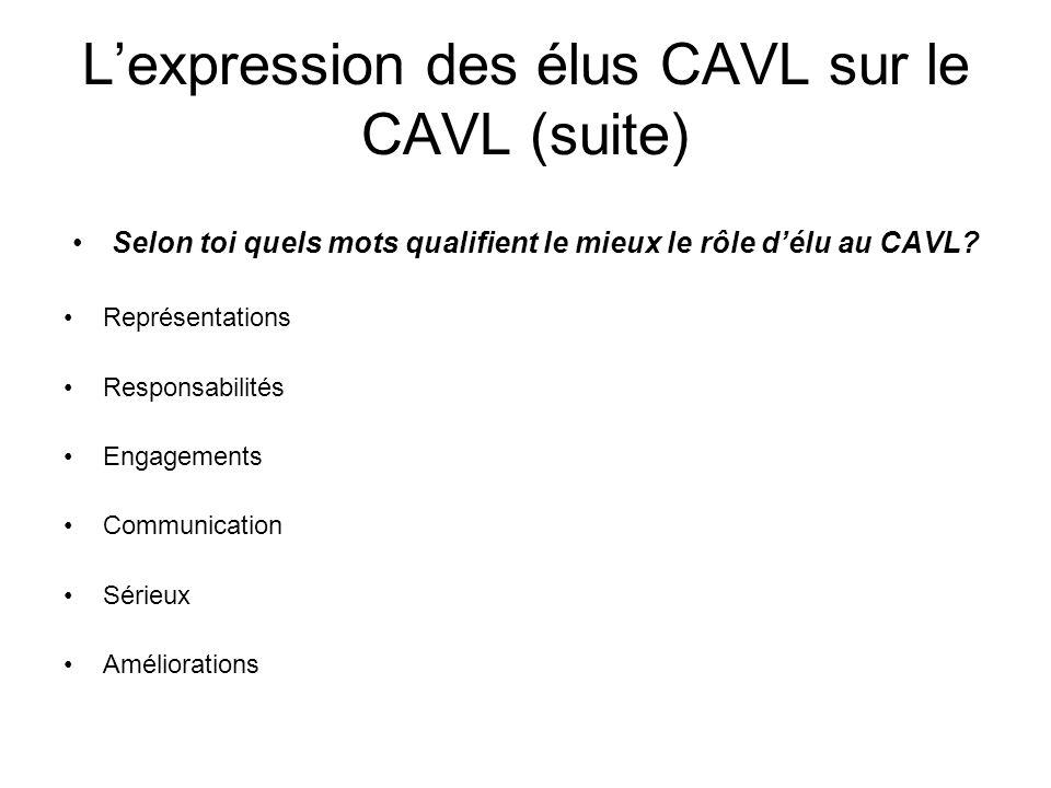 Lexpression des élus CAVL sur le CAVL (suite) Selon toi quels mots qualifient le mieux le rôle délu au CAVL? Représentations Responsabilités Engagemen