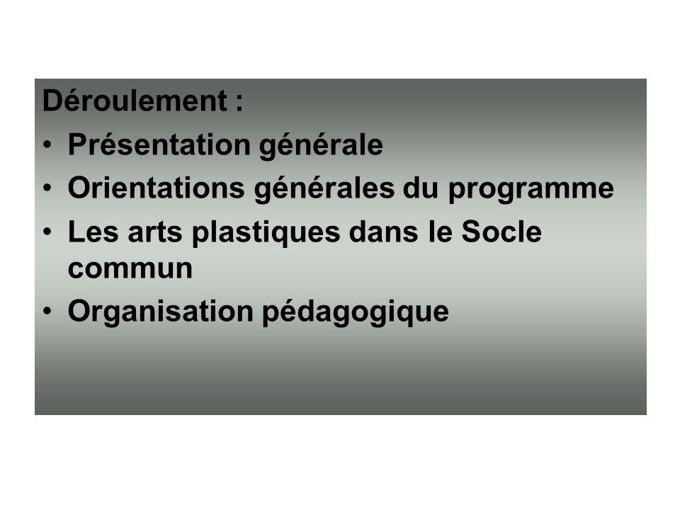 Déroulement : Présentation générale Orientations générales du programme Les arts plastiques dans le Socle commun Organisation pédagogique