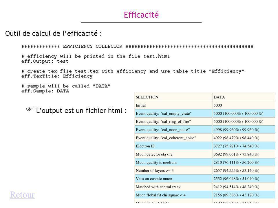 Outil de calcul de lefficacité : Loutput est un fichier html : Efficacité Retour