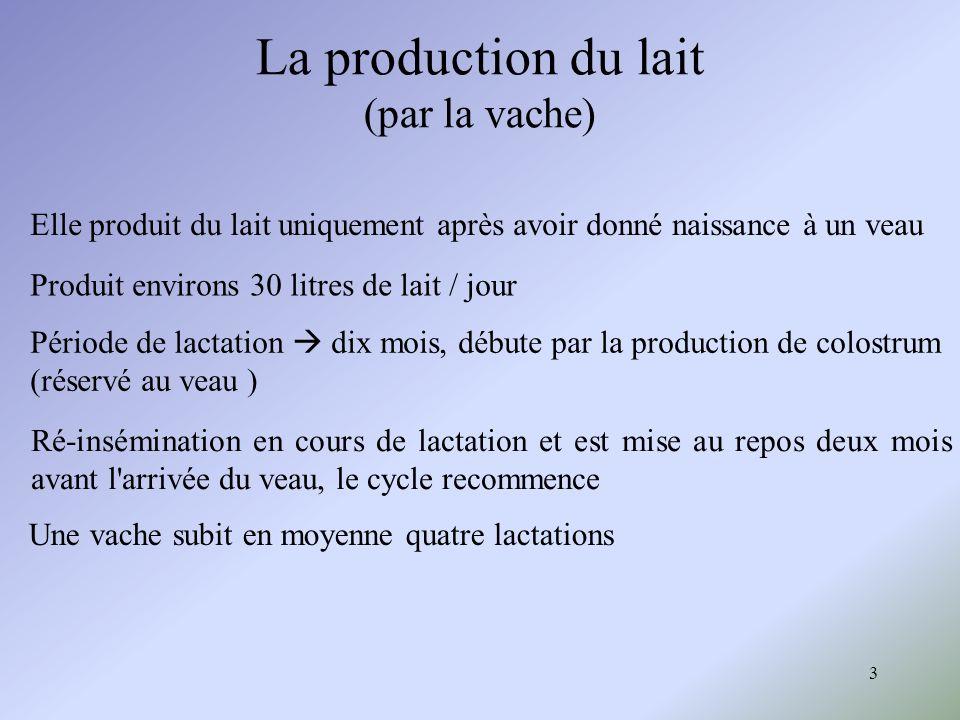 3 La production du lait (par la vache) Elle produit du lait uniquement après avoir donné naissance à un veau Période de lactation dix mois, débute par