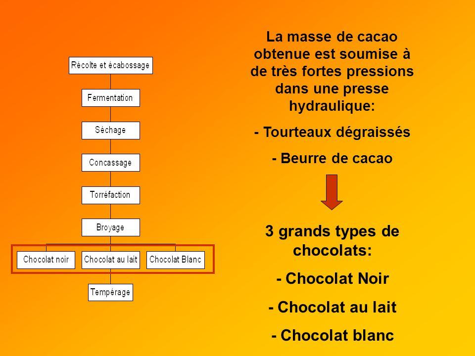 La masse de cacao obtenue est soumise à de très fortes pressions dans une presse hydraulique: - Tourteaux dégraissés - Beurre de cacao 3 grands types