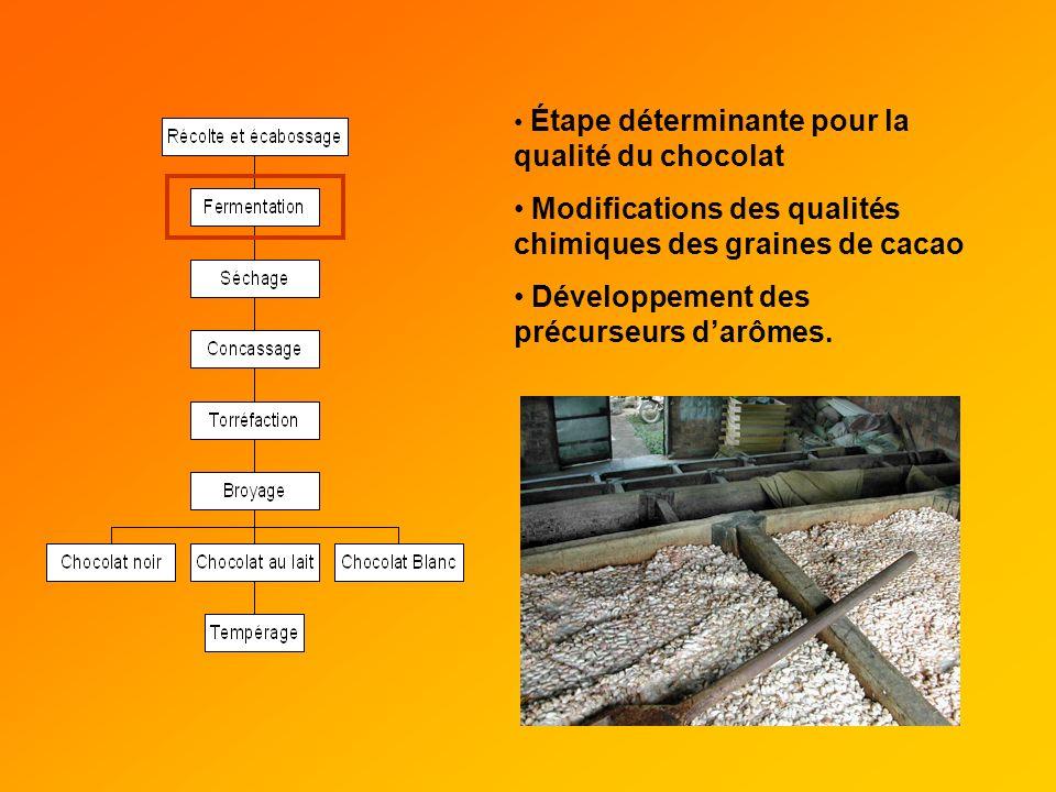 Étape déterminante pour la qualité du chocolat Modifications des qualités chimiques des graines de cacao Développement des précurseurs darômes.