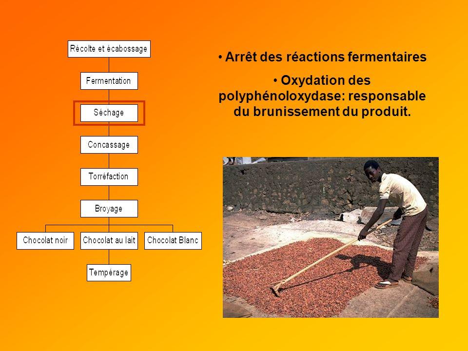 Arrêt des réactions fermentaires Oxydation des polyphénoloxydase: responsable du brunissement du produit.