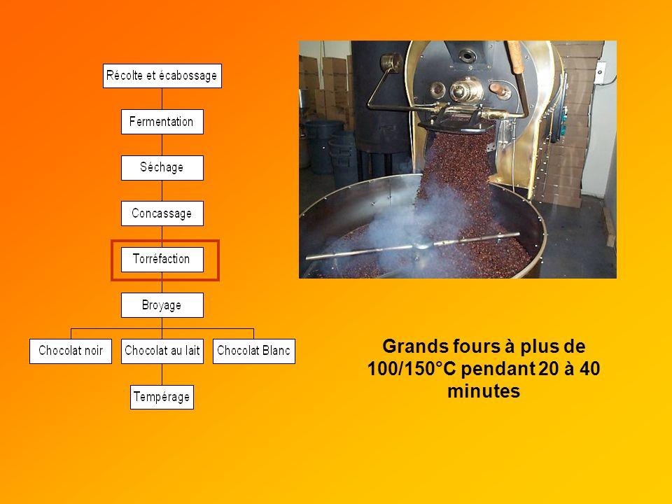 Grands fours à plus de 100/150°C pendant 20 à 40 minutes