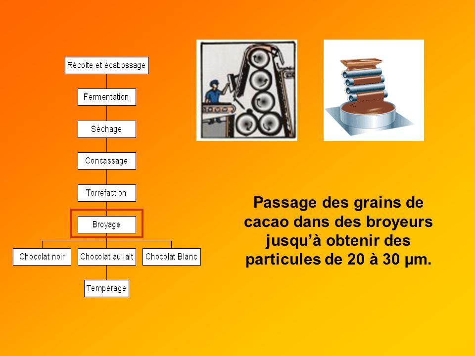 Passage des grains de cacao dans des broyeurs jusquà obtenir des particules de 20 à 30 µm.