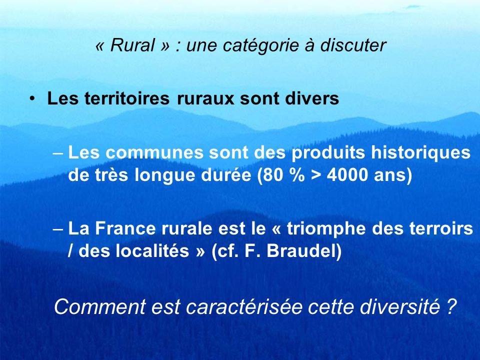 « Rural » : une catégorie à discuter Les territoires ruraux sont divers –Les communes sont des produits historiques de très longue durée (80 % > 4000