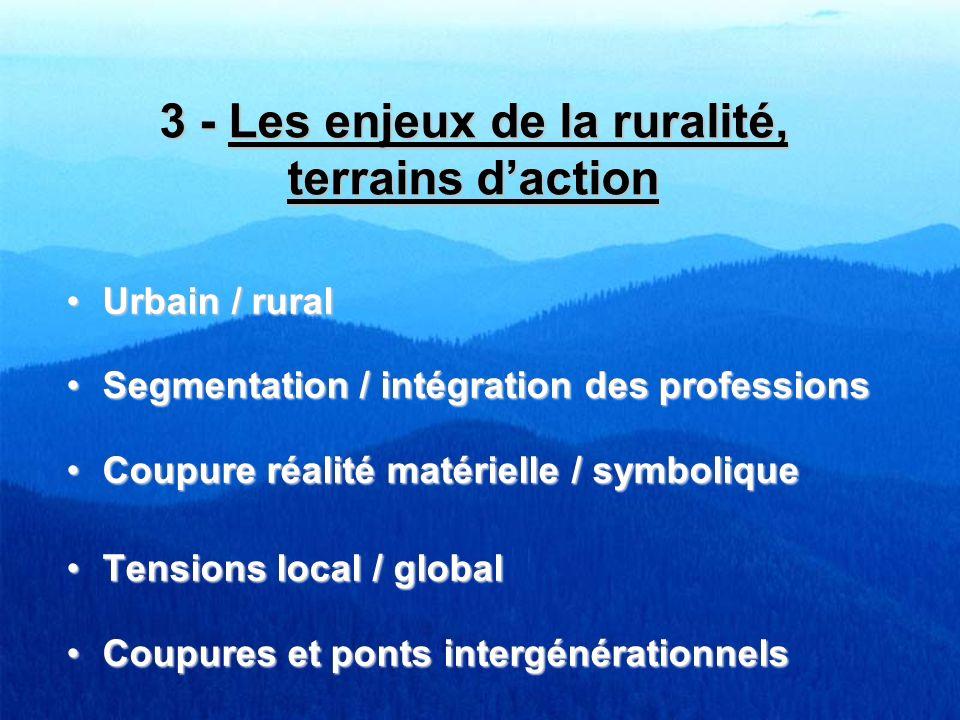 3 - Les enjeux de la ruralité, terrains daction Urbain / ruralUrbain / rural Segmentation / intégration des professionsSegmentation / intégration des
