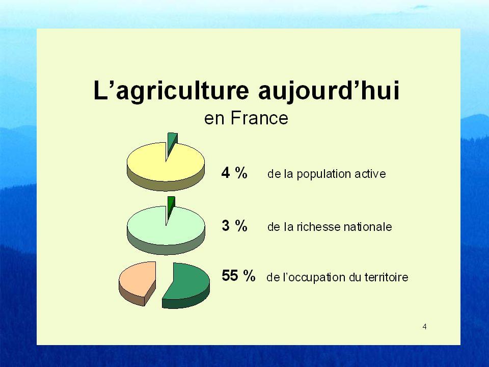 Avez-vous lintention, dans les prochaines années, daller habiter dans une petite commune (à la campagne, au bord de la mer ou à la montagne) ou dans une zone rurale .