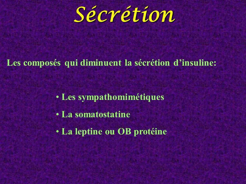 Les composés qui diminuent la sécrétion dinsuline: Les sympathomimétiques La somatostatine La leptine ou OB protéineSécrétion