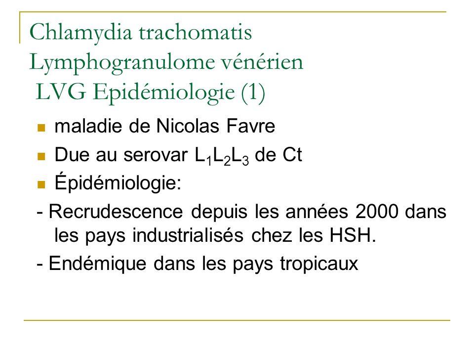 Chlamydia trachomatis Lymphogranulome vénérien LVG Epidémiologie (1) maladie de Nicolas Favre Due au serovar L 1 L 2 L 3 de Ct Épidémiologie: - Recrud