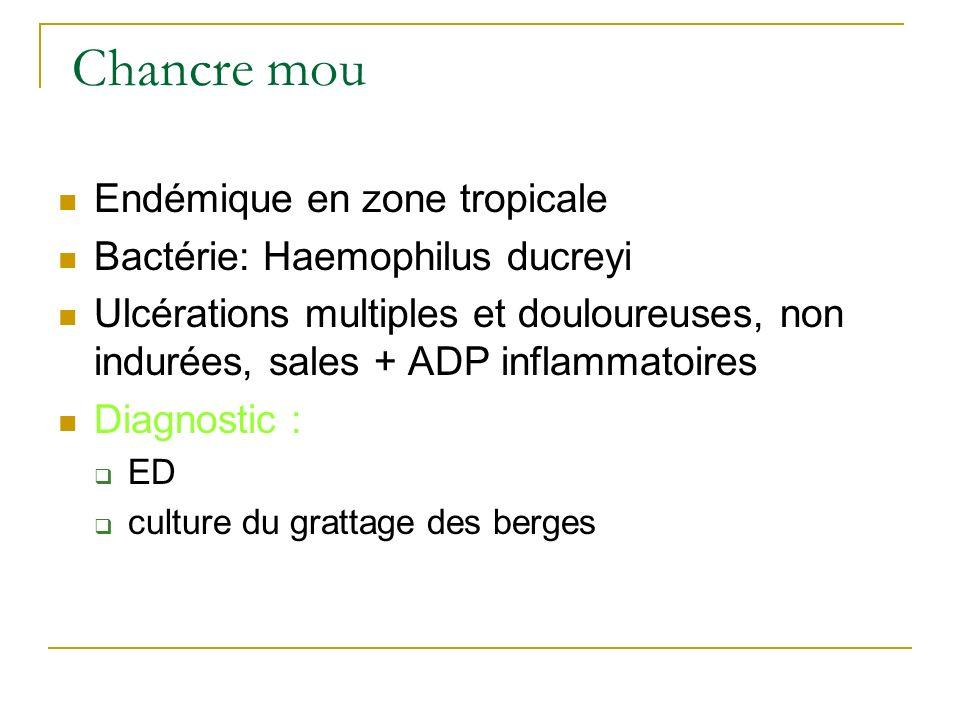 Chancre mou Endémique en zone tropicale Bactérie: Haemophilus ducreyi Ulcérations multiples et douloureuses, non indurées, sales + ADP inflammatoires