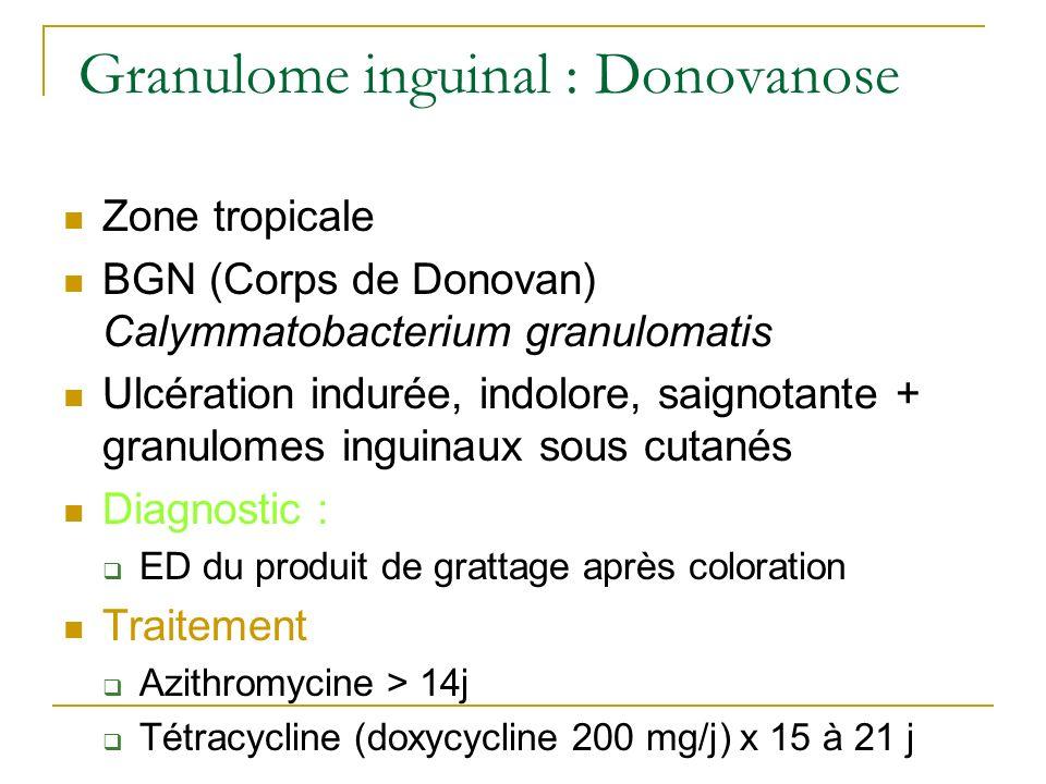 Granulome inguinal : Donovanose Zone tropicale BGN (Corps de Donovan) Calymmatobacterium granulomatis Ulcération indurée, indolore, saignotante + gran