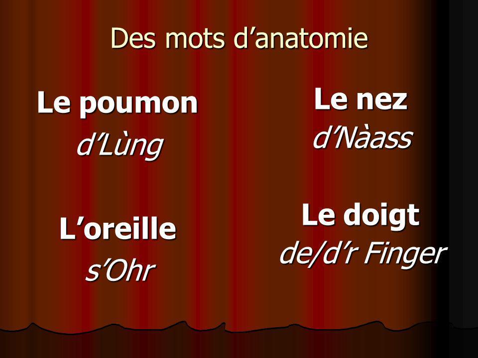Des mots danatomie Le poumon dLùngLoreillesOhr Le nez dNàass Le doigt de/dr Finger