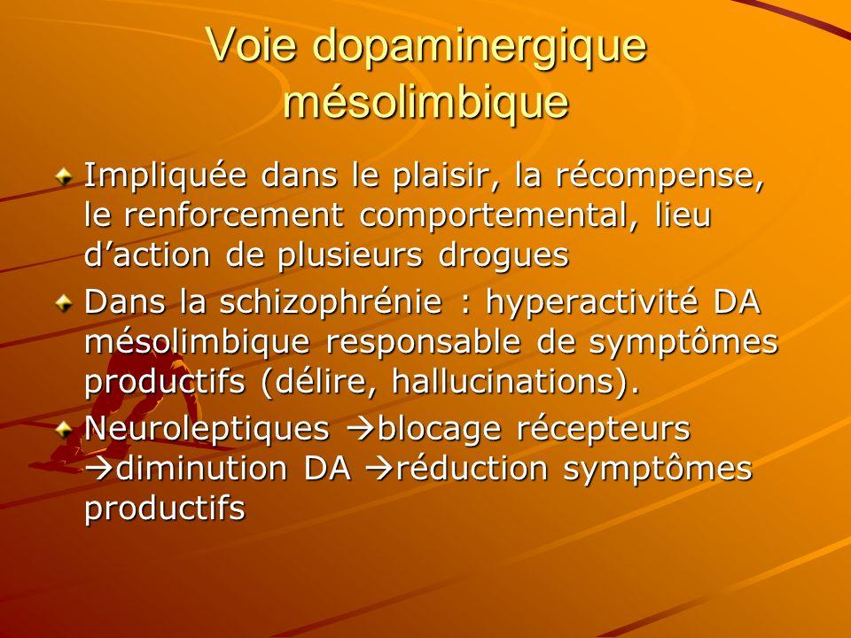 Voie dopaminergique mésolimbique Impliquée dans le plaisir, la récompense, le renforcement comportemental, lieu daction de plusieurs drogues Dans la s
