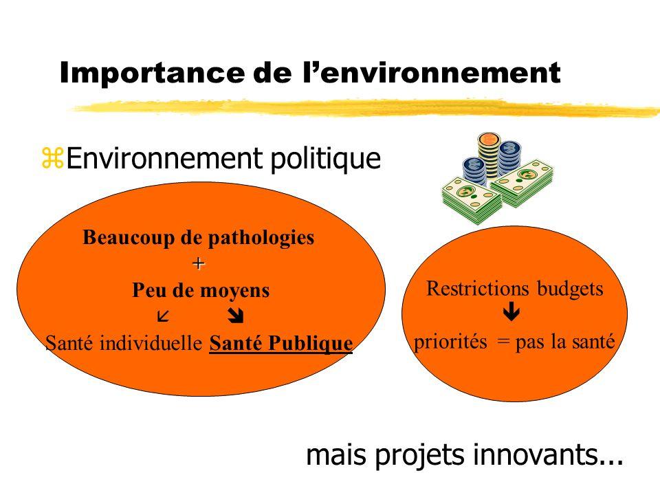 Importance de lenvironnement zEnvironnement politique mais projets innovants...