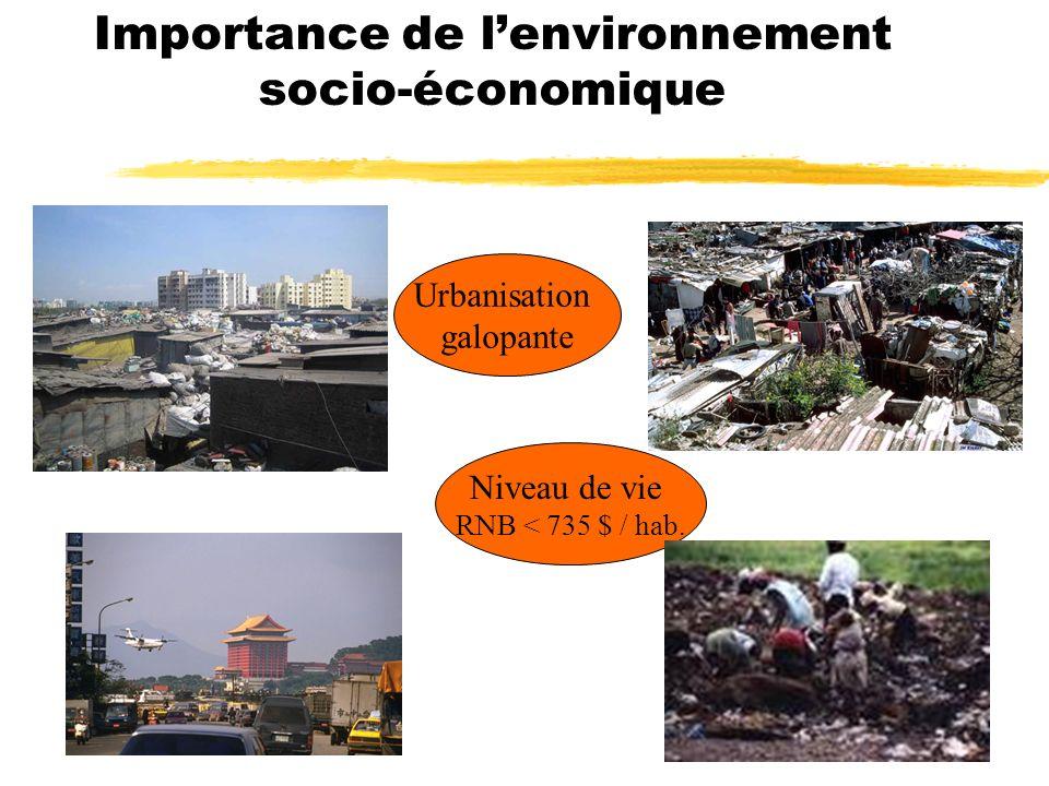 Importance de lenvironnement socio-économique Niveau de vie RNB < 735 $ / hab.
