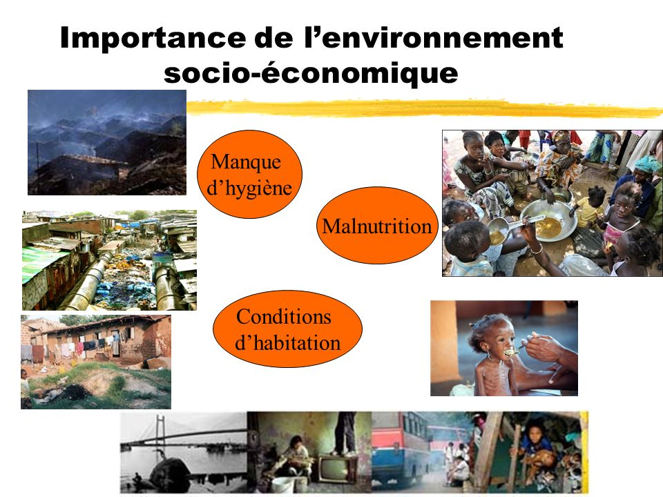 Importance de lenvironnement socio-économique Malnutrition Conditions dhabitation Manque dhygiène