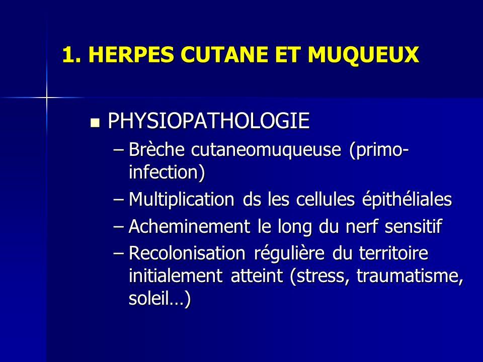 1. HERPES CUTANE ET MUQUEUX PHYSIOPATHOLOGIE PHYSIOPATHOLOGIE –Brèche cutaneomuqueuse (primo- infection) –Multiplication ds les cellules épithéliales