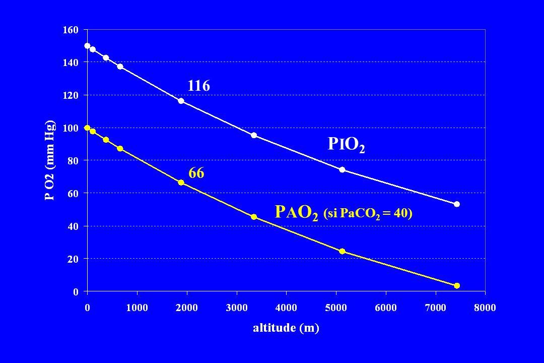 PIO2PIO2 P A O 2 (si PaCO 2 = 40) 116 66