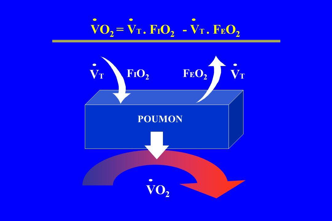 VO 2 POUMON VTVT VTVT FIO2FIO2 FEO2FEO2 VO 2 = V T. F I O 2 - V T. F E O 2
