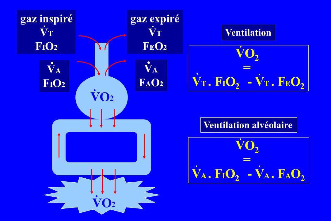 Ventilation Ventilation alvéolaire VO 2 = V T. F I O 2 - V T. F E O 2 VO 2 = V A. F I O 2 - V A. F A O 2 gaz inspiré V T F I O 2 gaz expiré V T F E O