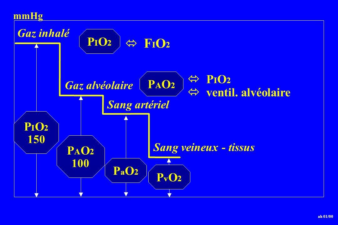 P I O 2 150 P A O 2 100 PaO2PaO2 ah 01/00 PvO2PvO2 Gaz inhalé Gaz alvéolaire Sang artériel Sang veineux - tissus PIO2PIO2 F I O 2 PAO2PAO2 P I O 2 ven