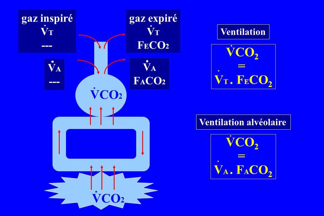 Ventilation Ventilation alvéolaire VCO 2 = V T. F E CO 2 VCO 2 = V A. F A CO 2 gaz inspiré V T --- gaz expiré V T F E CO 2 alvéole V A --- V A F A CO