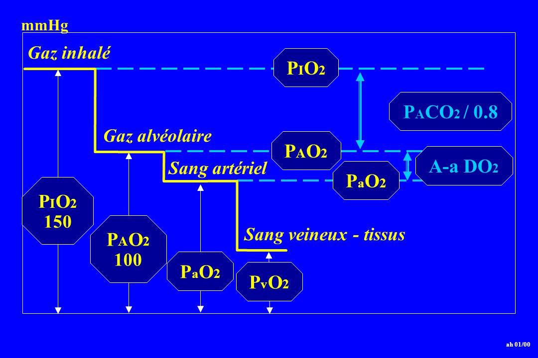 P I O 2 150 P A O 2 100 PaO2PaO2 ah 01/00 PvO2PvO2 Gaz inhalé Gaz alvéolaire Sang veineux - tissus PIO2PIO2 PAO2PAO2 mmHg Sang artériel P A CO 2 / 0.8