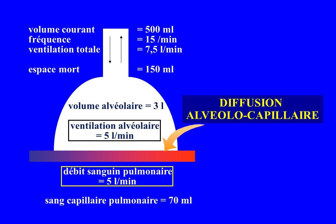 sang capillaire pulmonaire = 70 ml débit sanguin pulmonaire = 5 l/min ventilation alvéolaire = 5 l/min volume courant fréquence ventilation totale esp