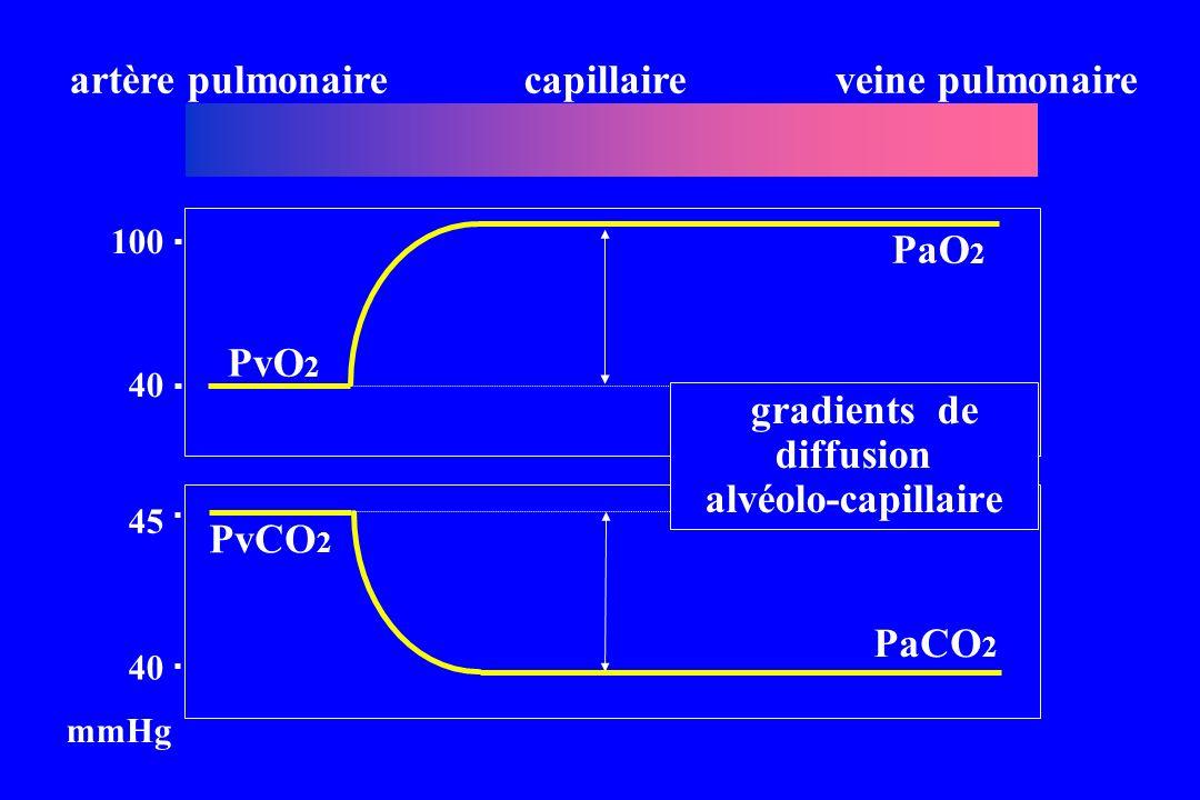 artère pulmonairecapillaireveine pulmonaire 40 100 PvO 2 45 40 PvCO 2 mmHg PaO 2 PaCO 2 gradients de diffusion alvéolo-capillaire