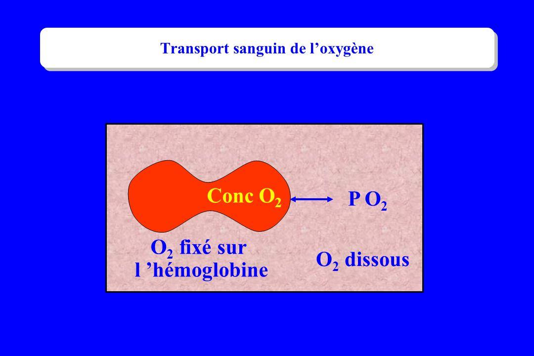 Transport sanguin de loxygène P O 2 O 2 fixé sur l hémoglobine Conc O 2 O 2 dissous