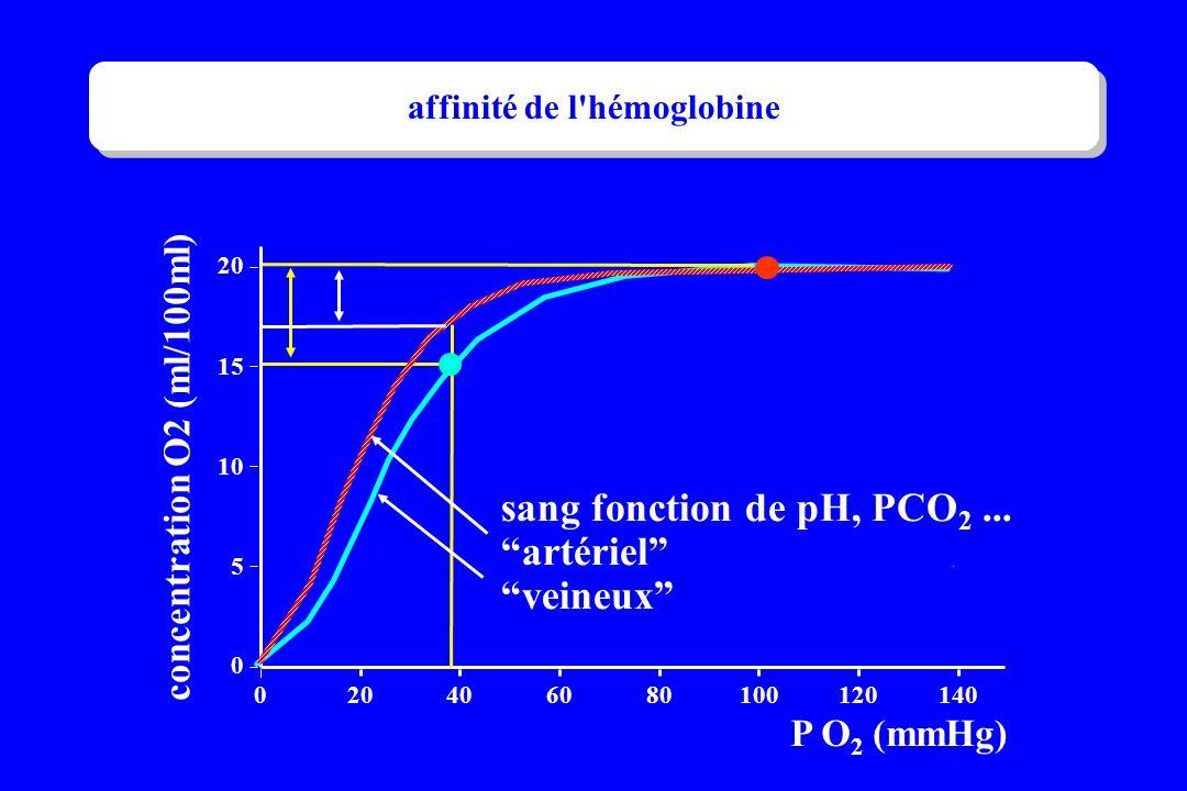 . P O 2 (mmHg) sang fonction de pH, PCO 2... artériel veineux 0 5 10 15 20 0 406080100120140 concentration O2 (ml/100ml) affinité de l'hémoglobine