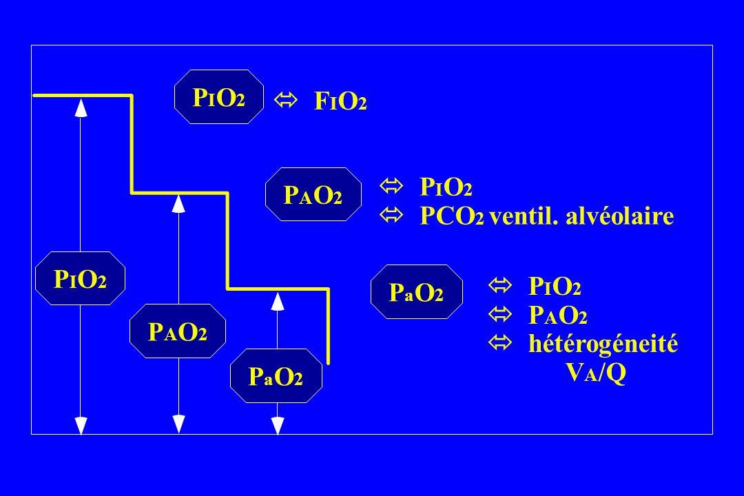 PIO2PIO2 PAO2PAO2 PaO2PaO2 PIO2PIO2 PAO2PAO2 PaO2PaO2 F I O 2 P I O 2 PCO 2 ventil. alvéolaire P I O 2 P A O 2 hétérogéneité V A /Q