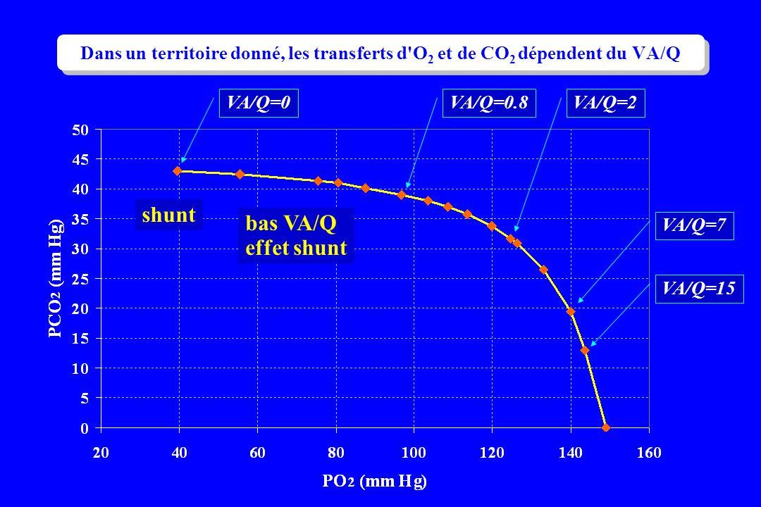 VA/Q=0VA/Q=0.8VA/Q=2 VA/Q=7 VA/Q=15 shunt bas VA/Q effet shunt Dans un territoire donné, les transferts d'O 2 et de CO 2 dépendent du VA/Q