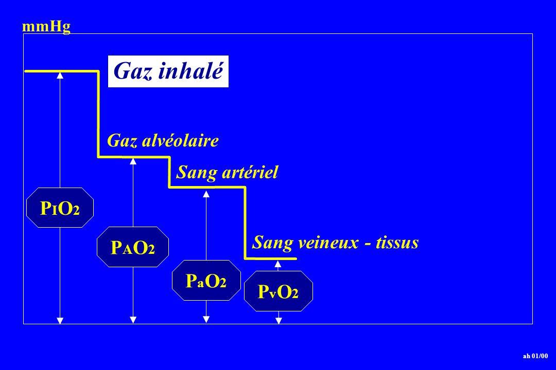 PIO2PIO2 PAO2PAO2 PaO2PaO2 ah 01/00 PvO2PvO2 Gaz inhalé Gaz alvéolaire Sang artériel Sang veineux - tissus mmHg