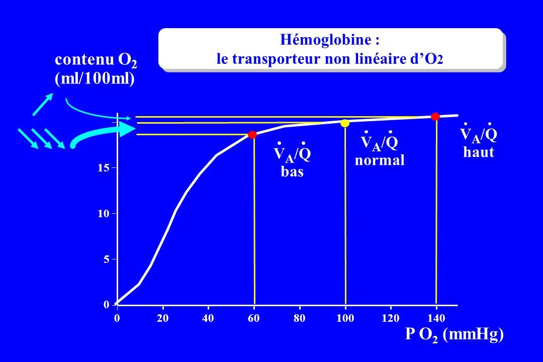 . P O 2 (mmHg) 0 5 10 15 020406080100120140 contenu O 2 (ml/100ml) V A /Q normal V A /Q haut V A /Q bas Hémoglobine : le transporteur non linéaire dO