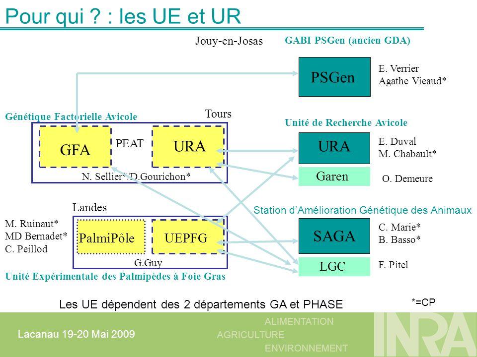 ALIMENTATION AGRICULTURE ENVIRONNEMENT Lacanau 19-20 Mai 2009 MAJ à partir dun fichier : souple DataGridView à 5 colonnes dgrv.Rows.Add( Domaine de naissance , DOM_NAIS , C , dimDomNais, 0); sql= select lib_champ,nom_champ,typ_data,dim,dec from sivol.parametre where dom_prod= + myDomaine + and espece= + myEspece + and nom_table= + nom_table + ;