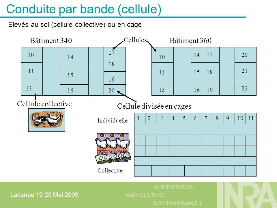 ALIMENTATION AGRICULTURE ENVIRONNEMENT Lacanau 19-20 Mai 2009 Conduite par bande (cellule) Bâtiment 340Bâtiment 360 1234567891011 Cellule divisée en c