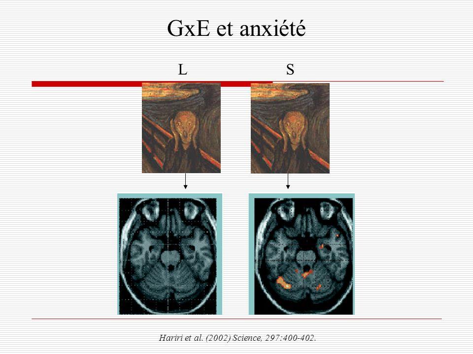 GxE et anxiété Hariri et al. (2002) Science, 297:400-402. SL