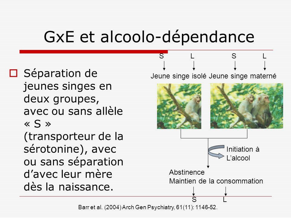GxE et alcoolo-dépendance Séparation de jeunes singes en deux groupes, avec ou sans allèle « S » (transporteur de la sérotonine), avec ou sans séparat
