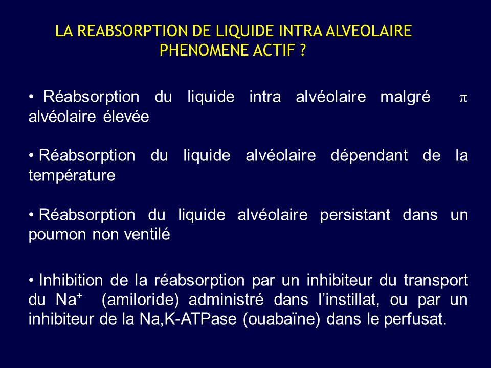 LA REABSORPTION DE LIQUIDE INTRA ALVEOLAIRE PHENOMENE ACTIF ? Réabsorption du liquide intra alvéolaire malgré alvéolaire élevée Réabsorption du liquid