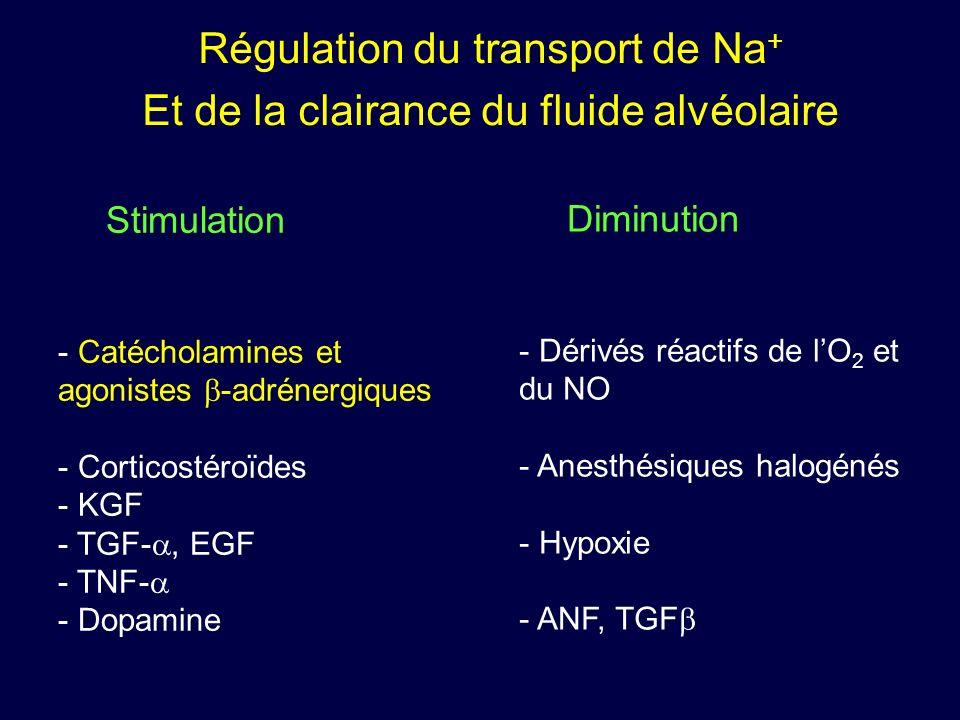 Régulation du transport de Na + Et de la clairance du fluide alvéolaire Stimulation - Catécholamines et agonistes -adrénergiques - Corticostéroïdes -
